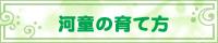 banner-kappa.jpg